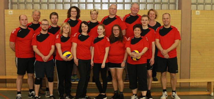 Hobby-Volleyball 2015