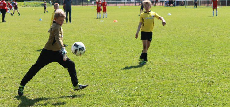 2. Sonntag der Sportwoche 2016 – E Jugend Turnier